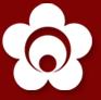 Seido Karate India (Noida)